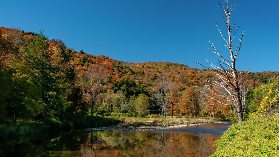 Hidden Pond Photograph