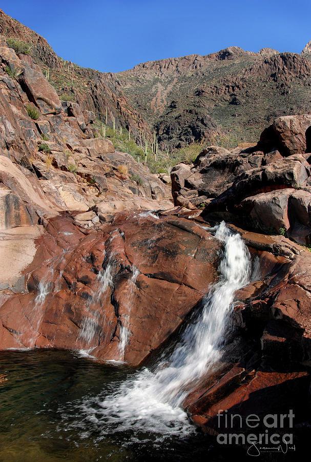 Hieroglyphic Canyon, Gold Canyon AZ by Joanne West