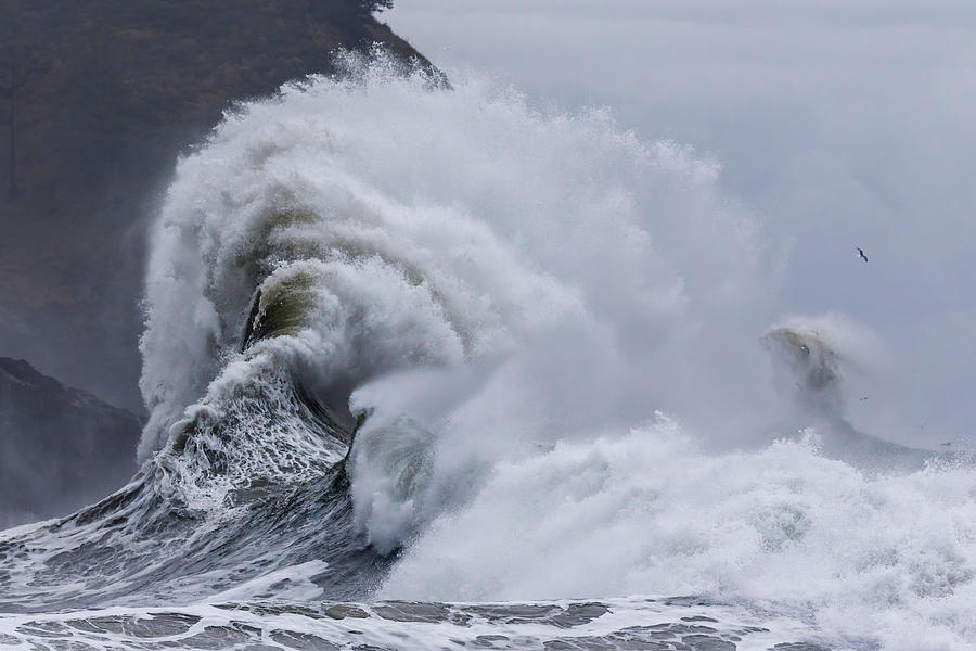 High Tide Waves by Wes and Dotty Weber