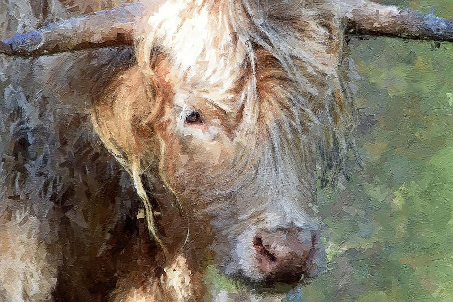 Highland Cow Digital Art