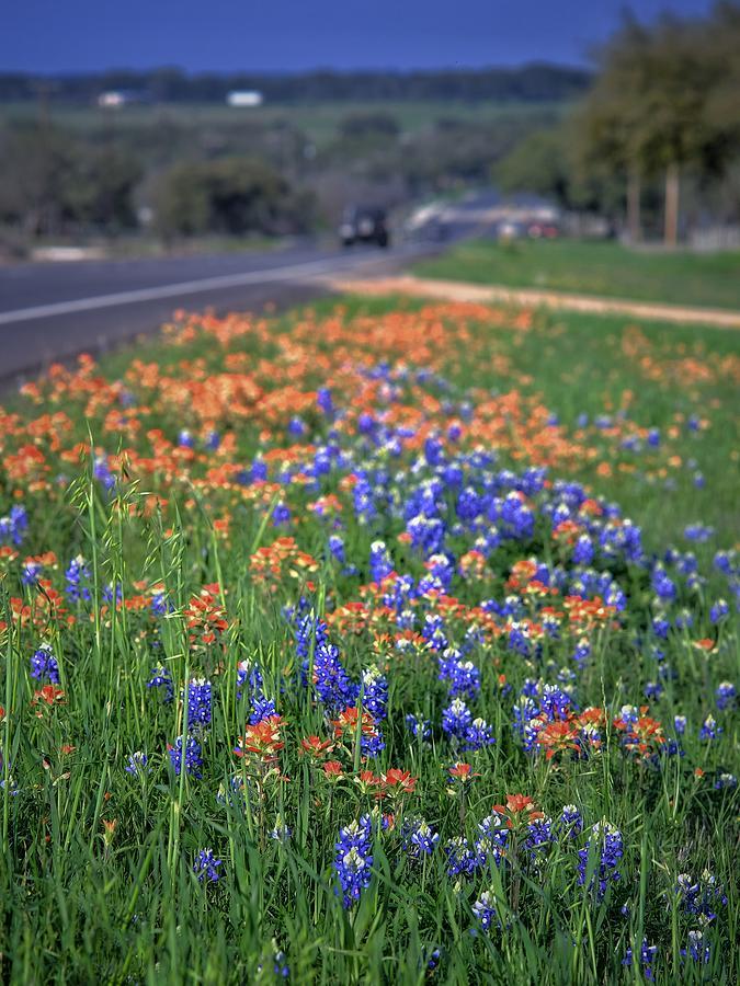 Hill County Roadside Photograph