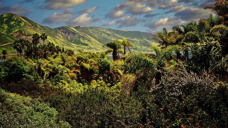 Hills Of Ventura, California Photograph