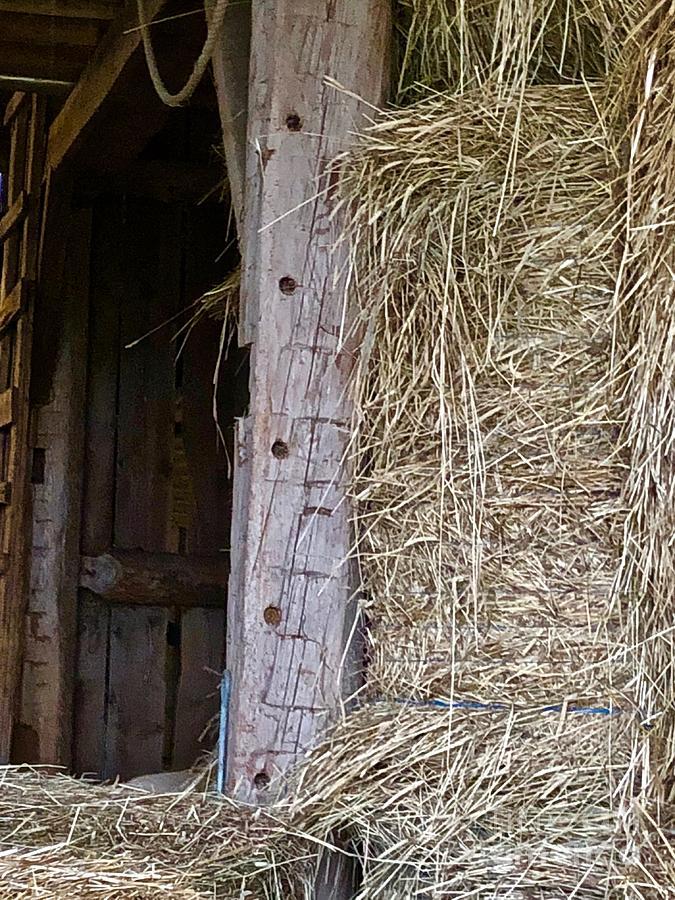 Historic Barn by Ann E Robson
