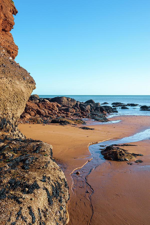 Summer Photograph - Holcombe Beach Devon by A J Paul
