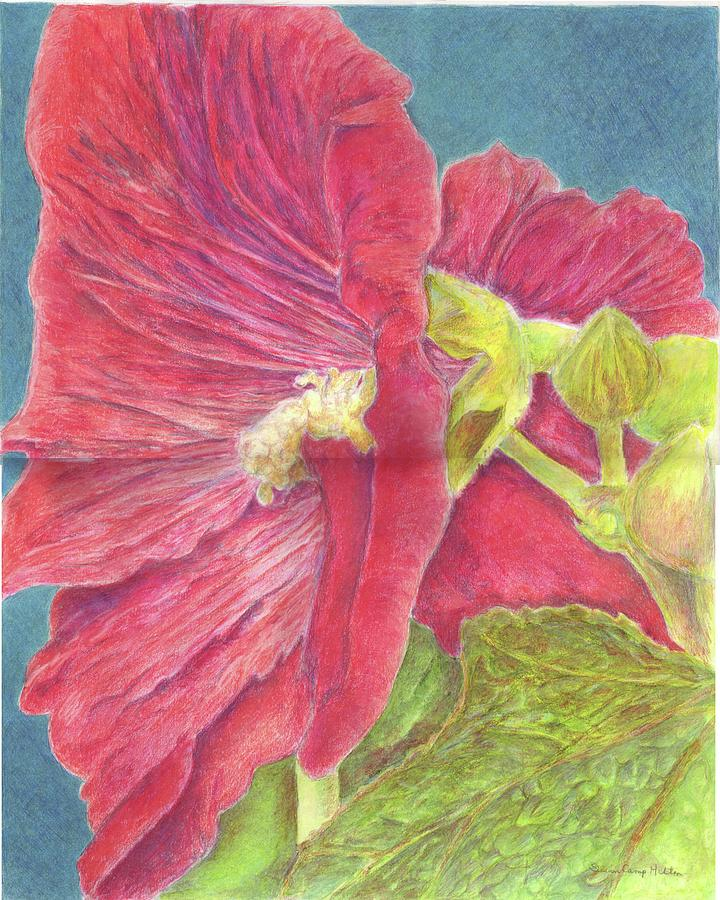 Hollyhock Painting - Hollyhock by Susan Camp Hilton