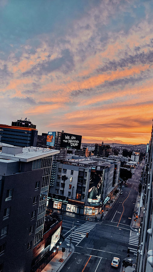 Hollywood Hills Photograph - Hollywood on Vine Sunset by Jera Sky