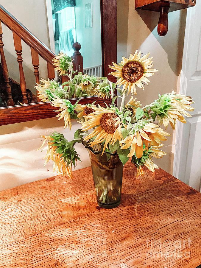 Home Grown Sunflowers Photograph