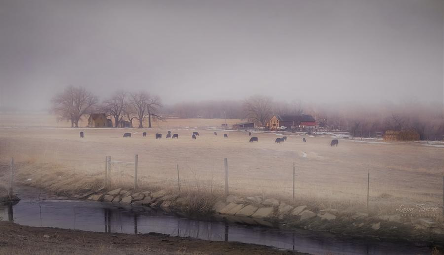 Homestead Photograph - Homestead by Laura Terriere
