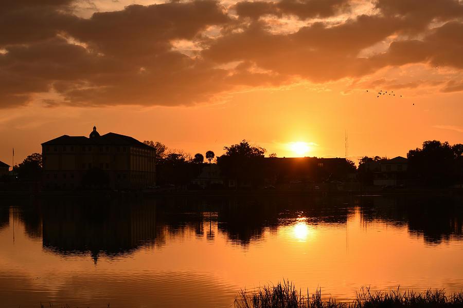 Homeward Flight Sunset by RD Erickson