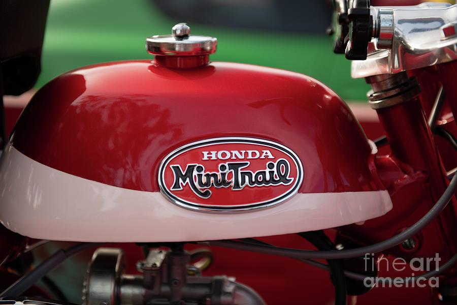 Honda Mini Trail Photograph