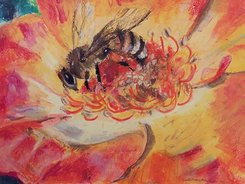 Honey Bee on a Rose by Danielle Rosaria