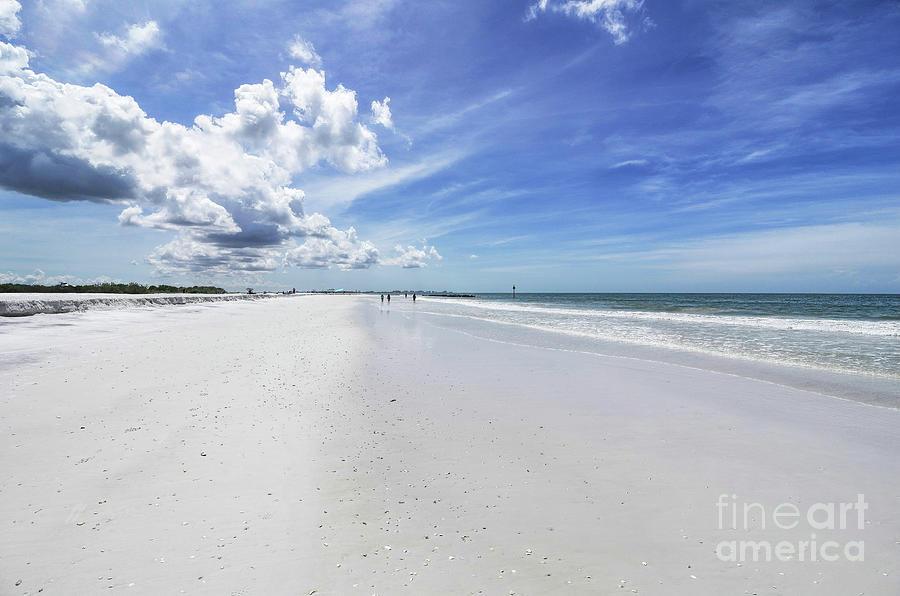 Honeymoon Island Photograph - Honeymoon Island State Park, Florida by Felix Lai