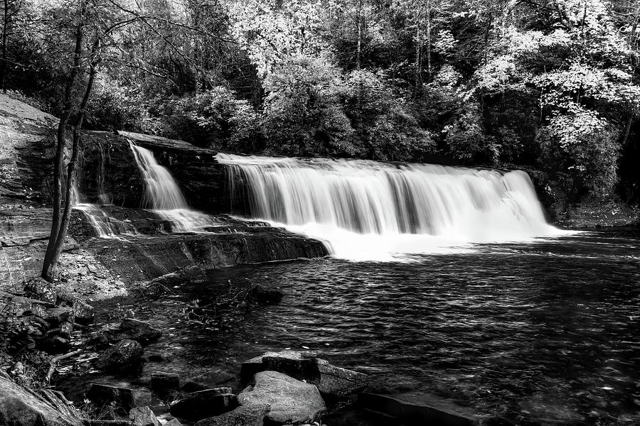 Hooker Fall In Autumn In Black And White by Carol Montoya