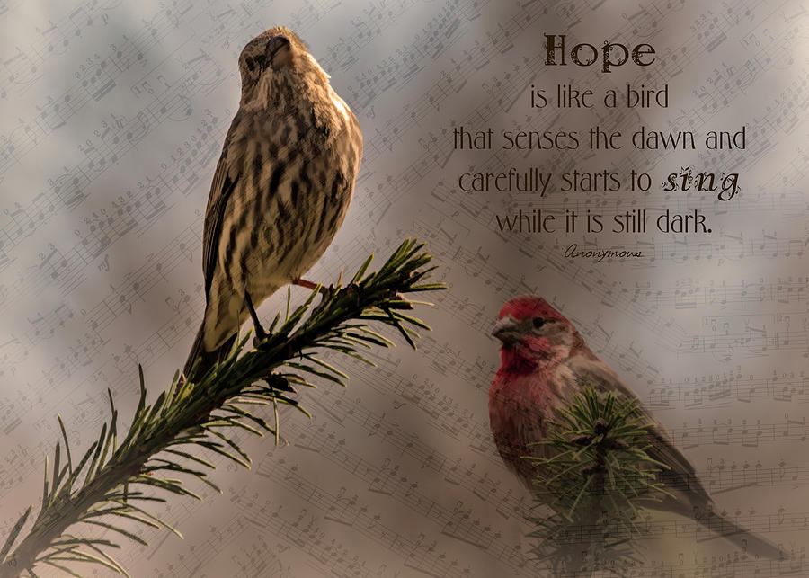 Hope Photograph