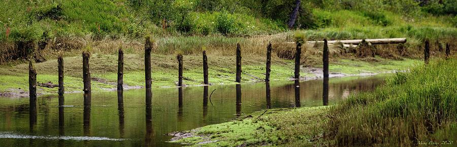 Hoquiam River 224 Photograph