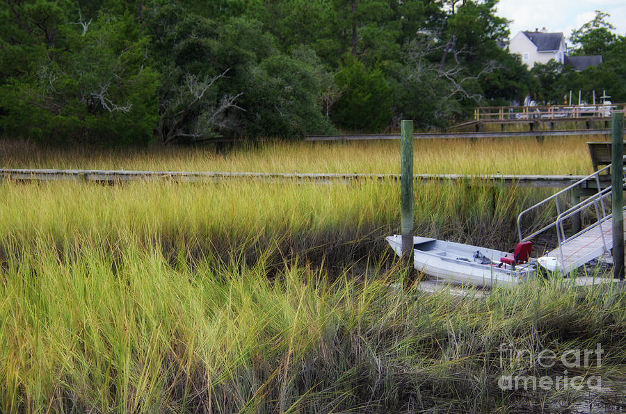 Horlebeck Creek - Low Tide Photograph