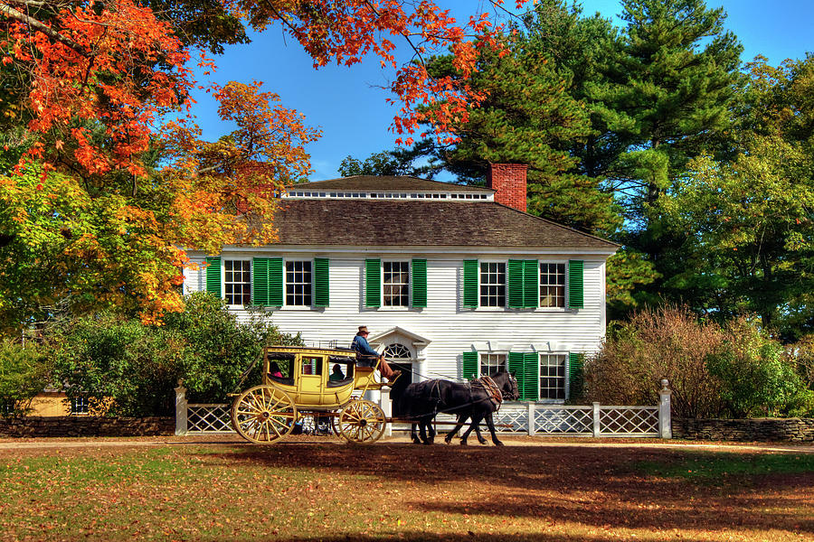 Horse And Buggy Photograph