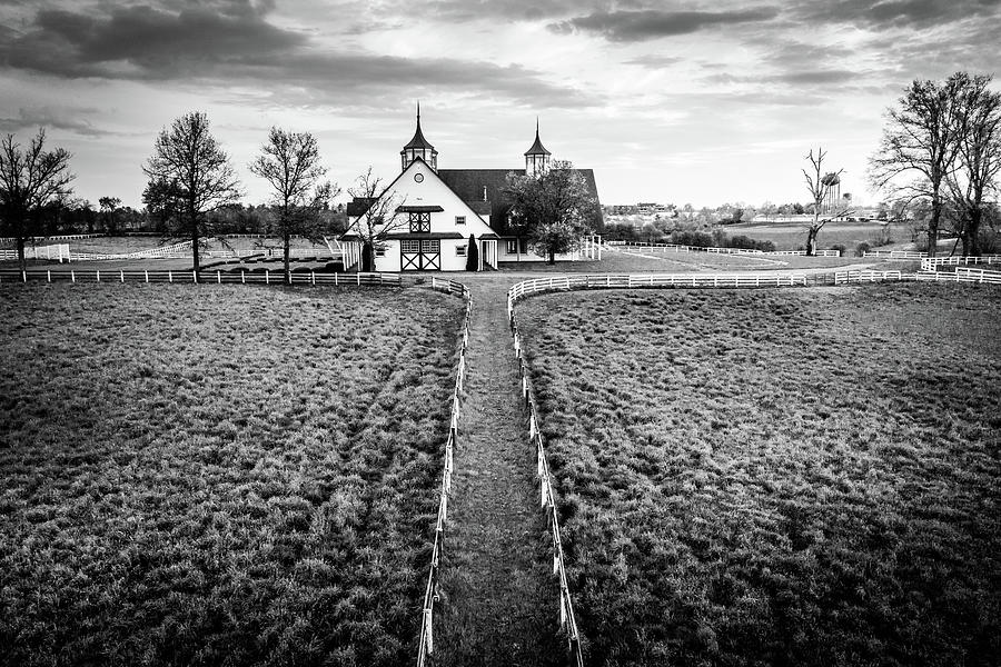 Horse Farm In Black And White Photograph