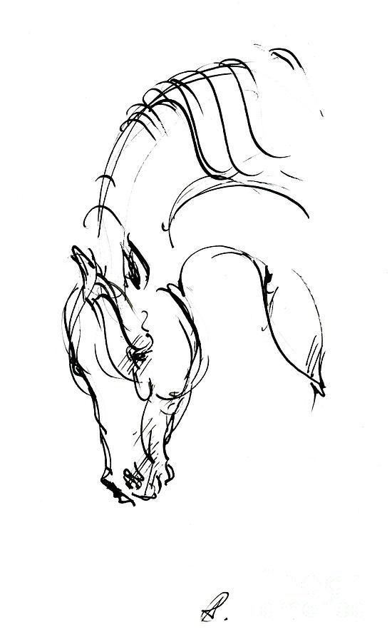 Horse head ink sketch 2019 12 01 by Angel Ciesniarska