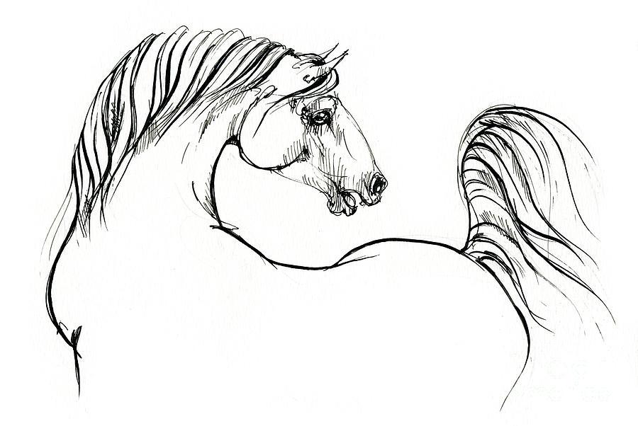 Horse ink drawing 2019 12 01 by Angel Ciesniarska