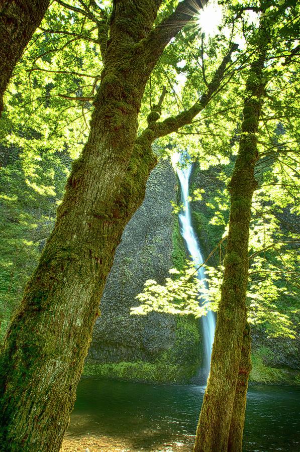 Horsetail Falls Photograph