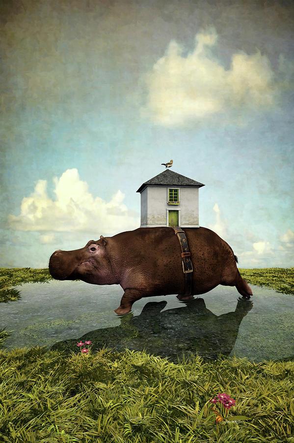 House Hippo by Cynthia Decker