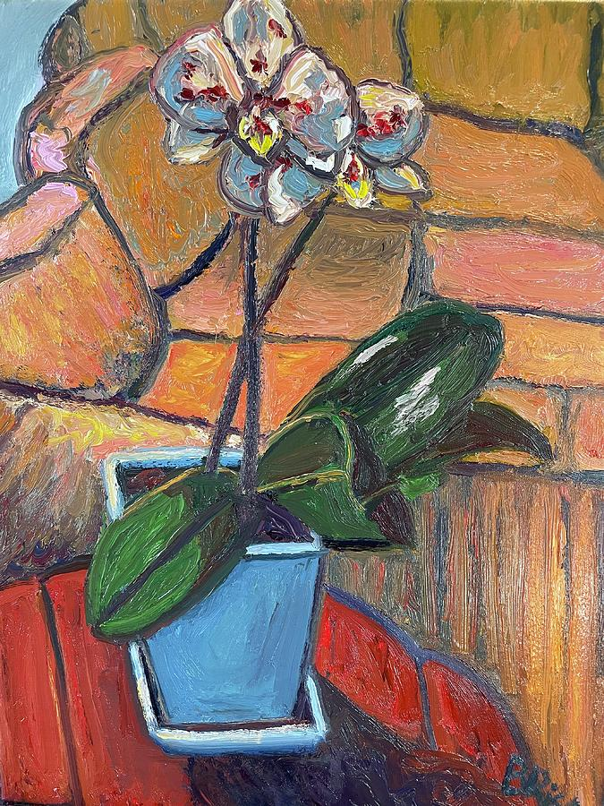 House plant by Beth Riso