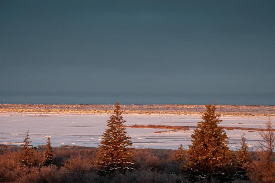 Hudson Bay Dawn by Mark Hunter