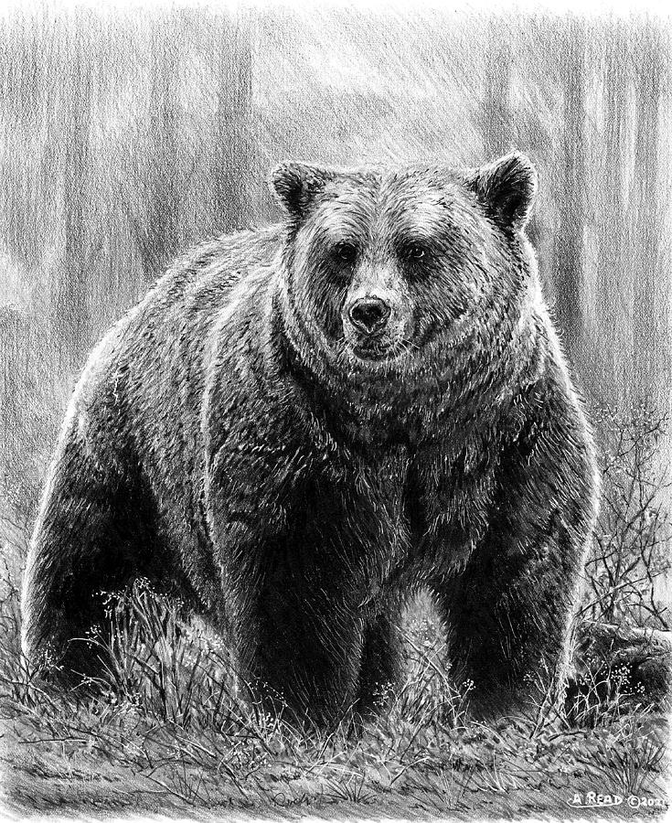 Huggy Bear Bw Drawing