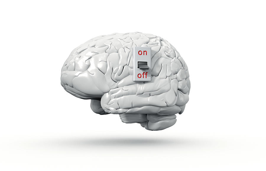 Human brain with On/Off switch in off position Photograph by Artpartner-images