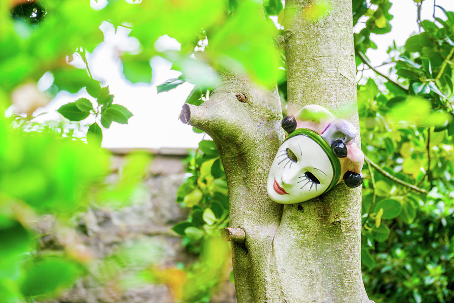 Human Face Baked Clay Mask On A Tree In A Garden Photograph