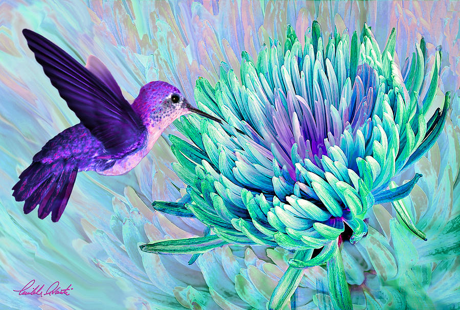 Hummingbird N Mum Cool Colors Digital Art