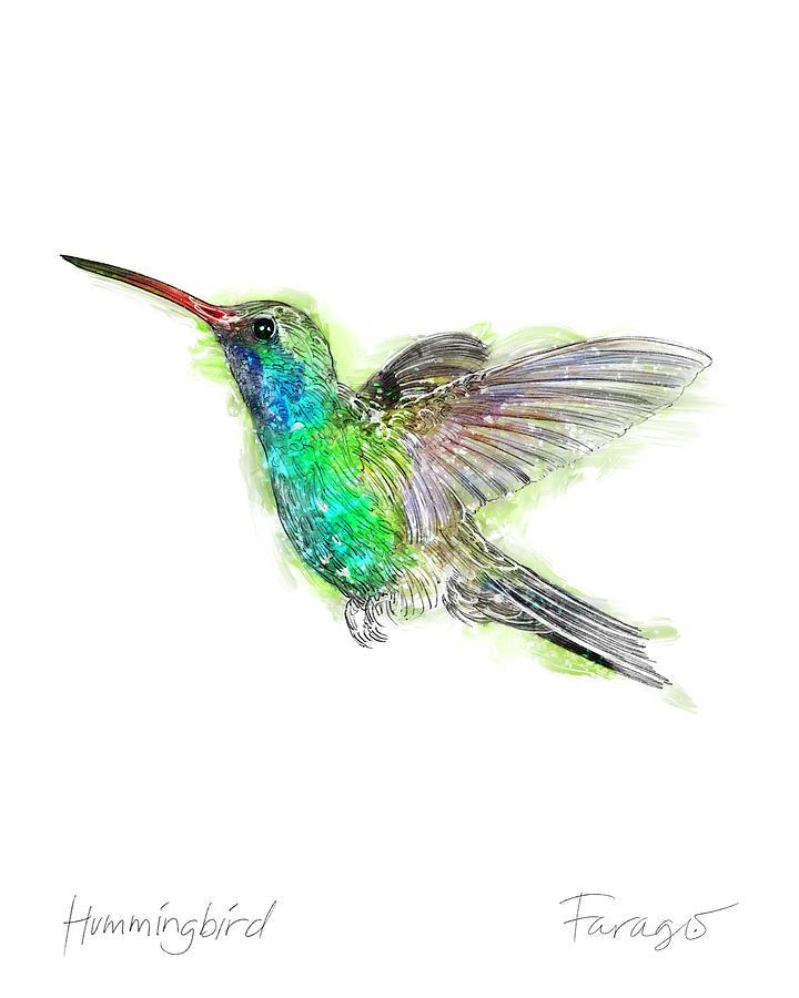 Trochilidae Drawing - Hummingbird by Peter Farago