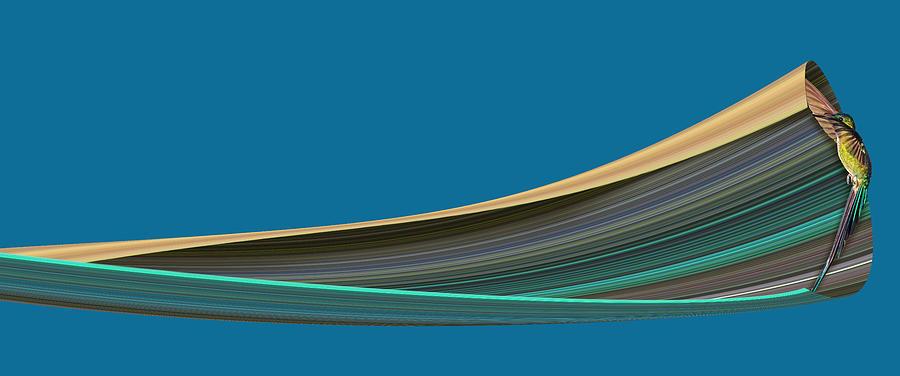 Hummingbird Pixel Stretch Digital Art
