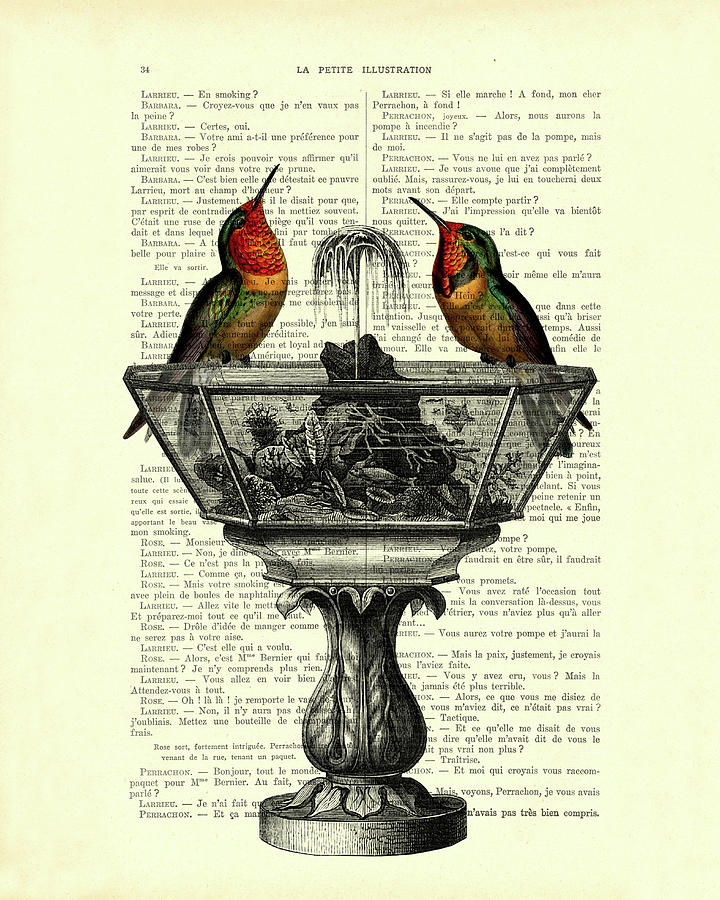 Bird Mixed Media - Hummingbirds on water fountain book page art by Madame Memento