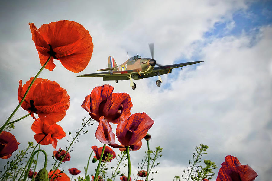 Hurricane Poppy Fly Past Digital Art