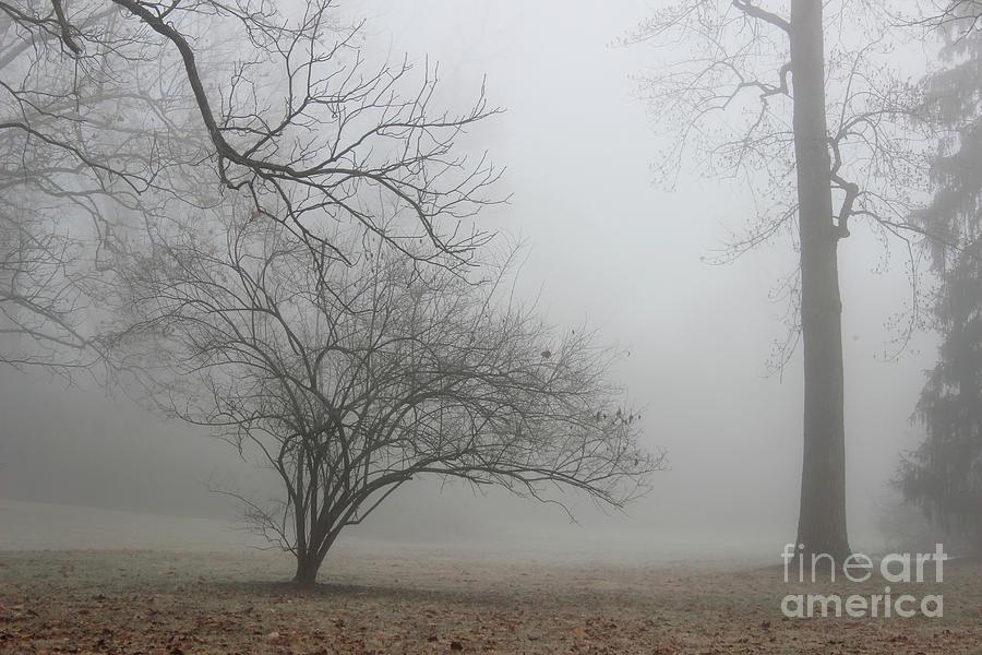 Hush by Karen Adams