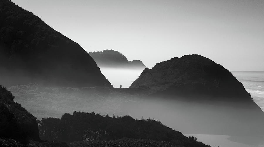 HWY 101 Oregon Coast Monochrome 120719 by Rospotte Photography