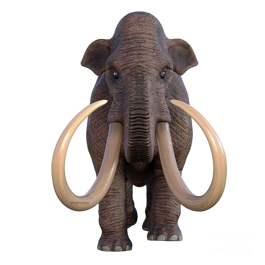 Ice Age Mammoth Digital Art