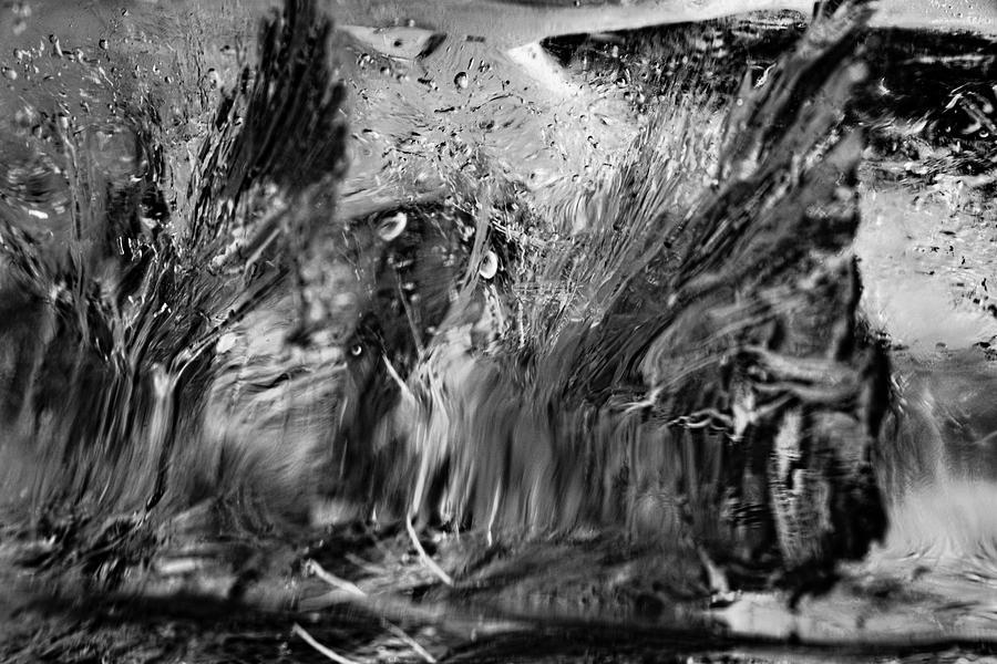 Ice Cubes 1327 Photograph