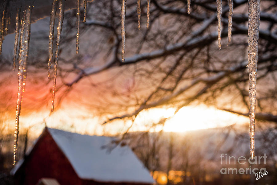 Ice Icicles and Red Barn by Alana Ranney