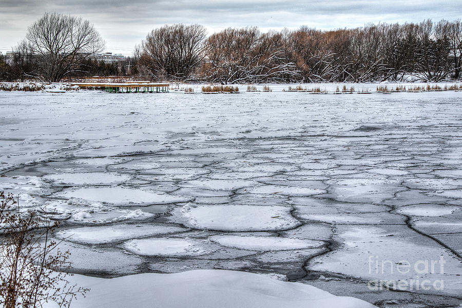 Ice Disks on the Bay Photograph by Eden Watt