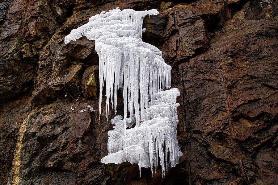 Ice Sculptures Photograph