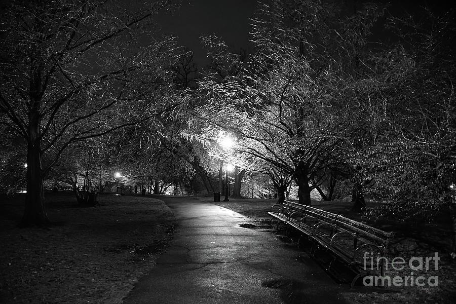 Ice Storm, Isham Park  by Cole Thompson