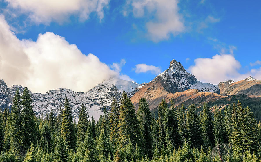 Icefields Parkway Landscape 8 by Dan Sproul