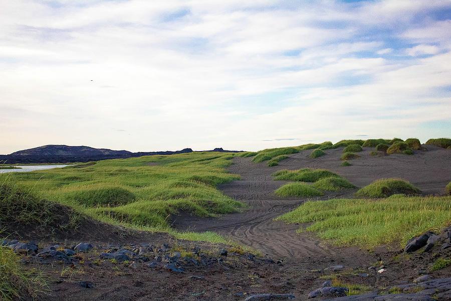 Iceland Beach Photograph