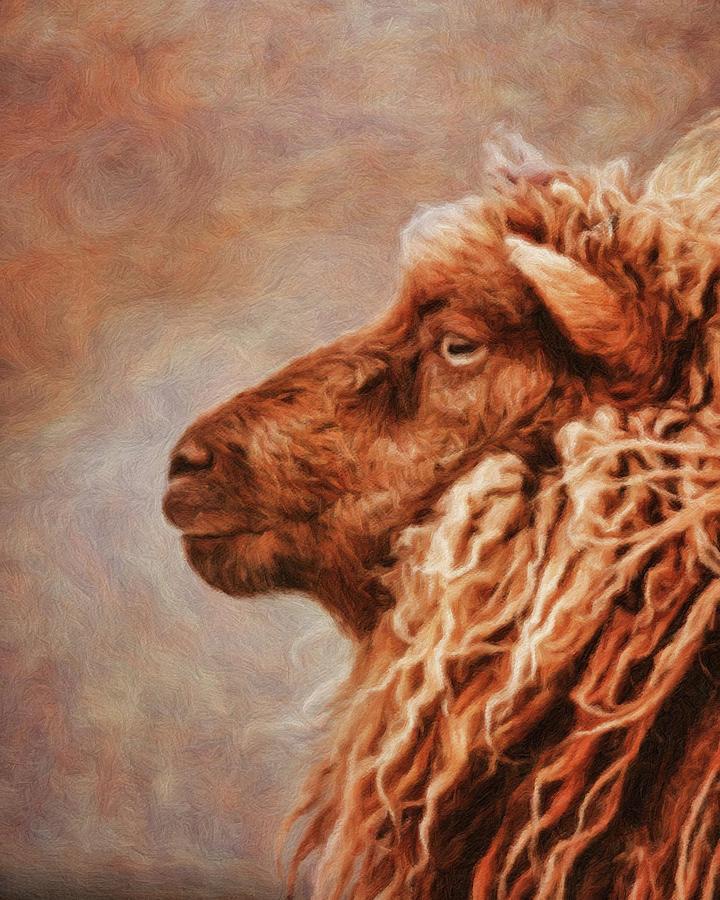 Icelandic Sheep Digital Art