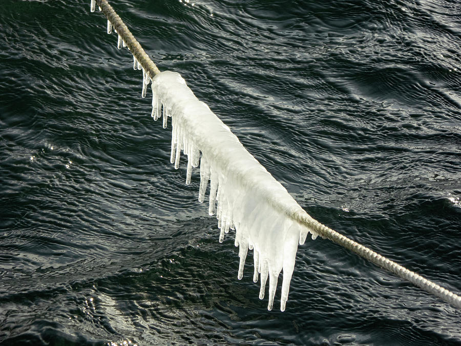 Icicles Photograph