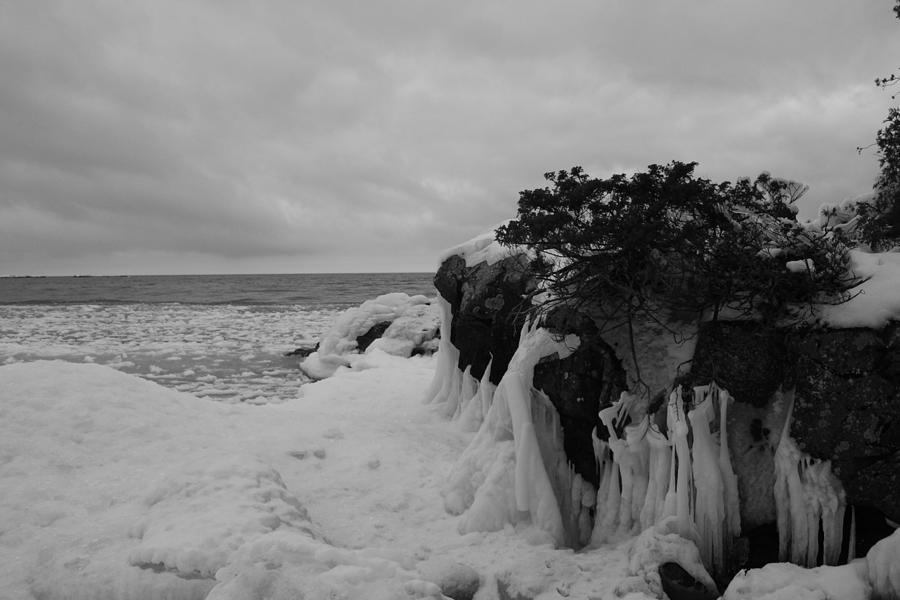 Icy Black And White Photograph