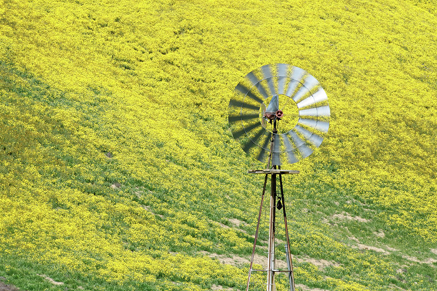 If It Ain't Broke... -- Aermotor 702 Windmill in San Luis Obispo County, California by Darin Volpe